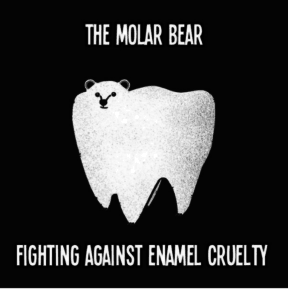 molar bear meme